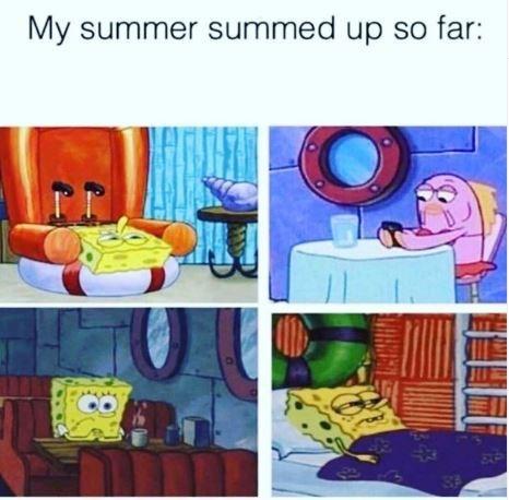 Meme - Cartoon - My summer summed up so far:
