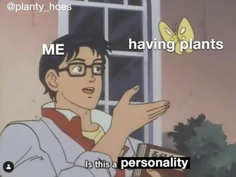 Meme - Animated cartoon - @planty_hoes having plants ME Is this a personality