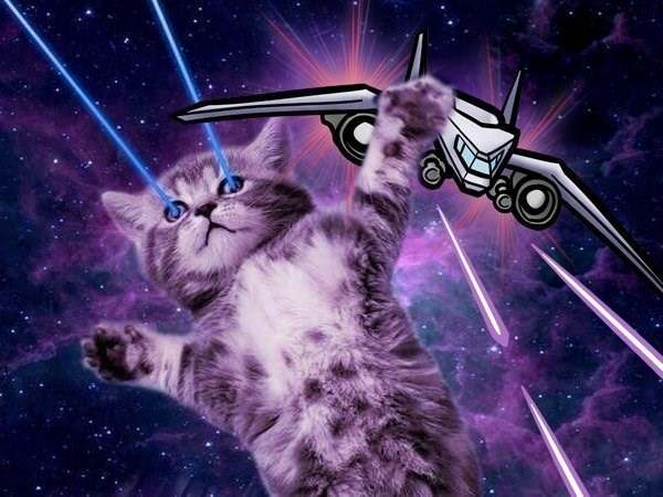 cat in space - Cat