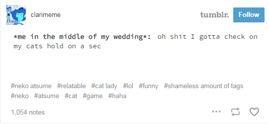 Text - tumblr. Follow clarimeme me in the middle of my wedding*: oh shit I gotta check on my cats hold on a sec #neko atsume #relatable #cat lady #lol #funny #shameless amount of tags #neko #atsume #cat #game #haha 1,054 notes