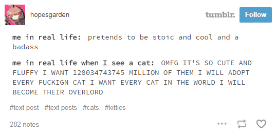 Text - tumblr. Follow hopesgarden me in real li fe: pretends to be stoic and cool and a badass me in real life when I see a cat: OMFG IT'S SO CUTE AND FLUFFY I WANT 128034743745 MILLION OF THEM I WILL ADOPT EVERY FUCKIGN CAT I WANT EVERY CAT IN THE WORLD I WILL BECOME THEIR OVERLORD #text post #text posts #cats #kitties 282 notes