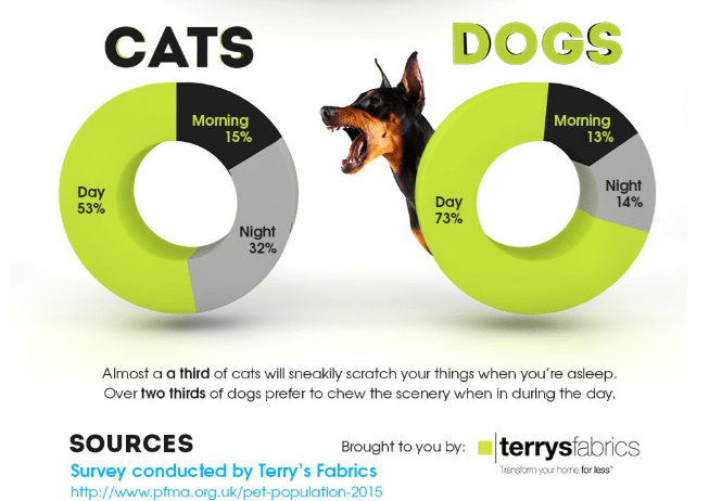 Product - DOGS CATS Morning 15% Morning 13% Night 14% Day 53% Day 73% Night 32% Almost a a third of cats will sneakily scratch your things when you're asleep Over two thirds of dogs prefer to chew the scenery when in during the day. SOURCES terrysfabrics Brought to you by: Survey conducted by Terry's Fabrics http://www.pfma.org.uk/pet-population-2015 Trenstom your home for less