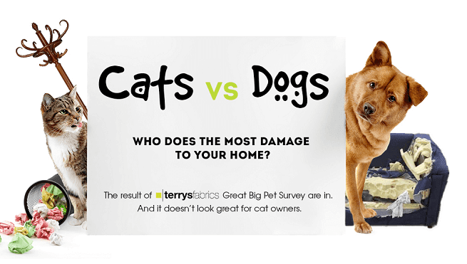 Canidae - Cats vs Dogs VS WHO DOES THE MOST DAMAGE TO YOUR HOME? The result of terrysfabrics Great Big Pet Survey are in. And it doesn't look great for cat owners