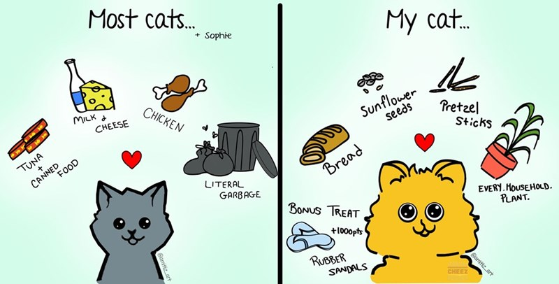 cat comics comics funny cats food Cats funny webcomics - 9326554112
