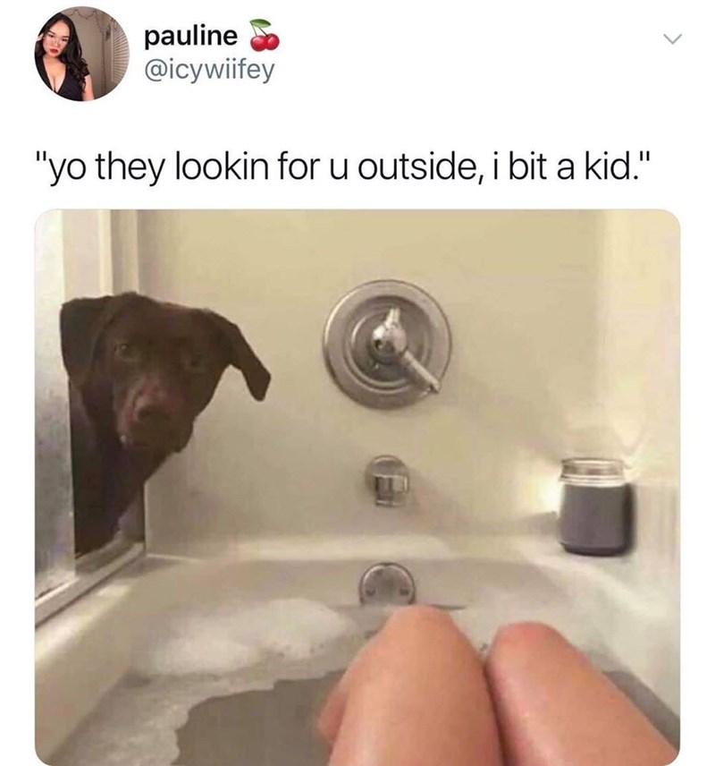 "dog meme - Product - pauline @icywiifey ""yo they lookin for u outside, i bit a kid."""