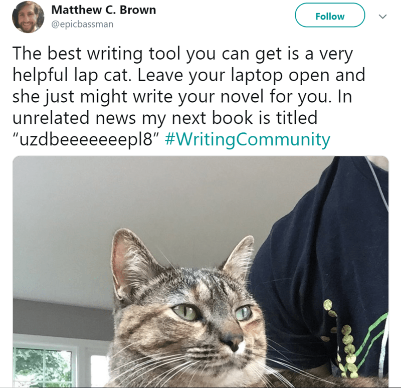 """cat meme - Cat - Matthew C. Brown Follow @epicbassman The best writing tool you can get is a very helpful lap cat. Leave your laptop open and she just might write your novel for you. In unrelated news my next book is titled """"uzdbeeeeeeepl8"""" #WritingCommunity"""