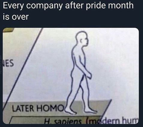 Meme - Every company after pride month is over LATER HOMO H sapiens