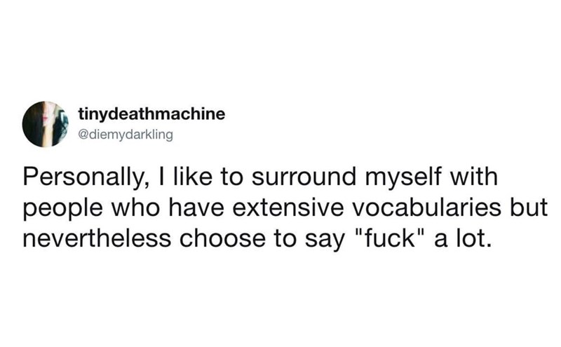 """Tweet - Personally, I like to surround myself with people who have extensive vocabularies but nevertheless choose to say """"fuck"""" a lot."""