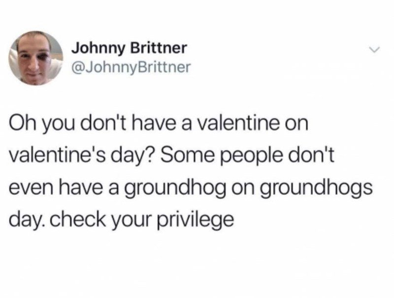 Meme - Text - Johnny Brittner @JohnnyBrittner Oh you don't have a valentine on valentine's day? Some people don't even have a groundhog on groundhogs day.check your privilege