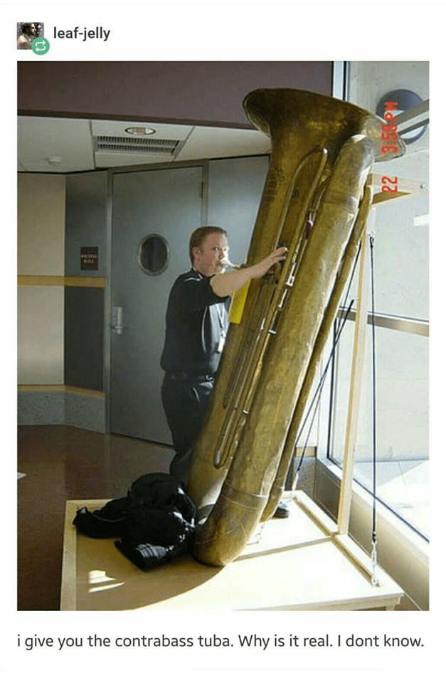 Euphonium - leaf-jelly i give you the contrabass tuba. Why is it real. I dont know.