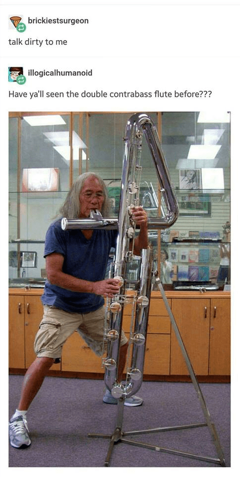 Experimental musical instrument - brickiestsurgeon talk dirty to me illogicalhumanoid Have ya'll seen the double contrabass flute before???