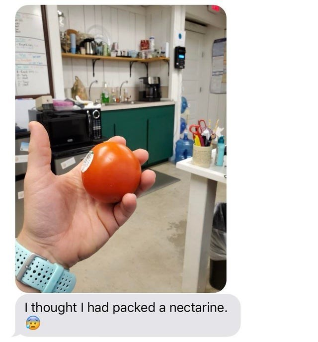 Product - I thought I had packed a nectarine.