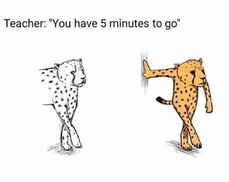 """Meme - Teacher: """"You have 5 minutes to go"""" - animal sketch"""