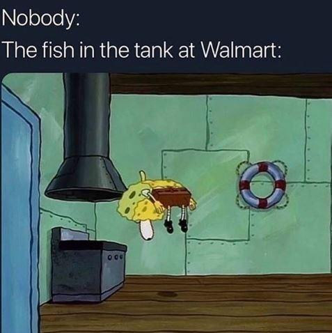 Meme - Nobody: The fish in the tank at Walmart: - Spongebob