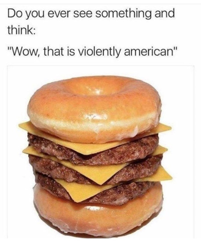 "Meme - Hamburger - Do you ever see something and think: ""Wow, that is violently american"""