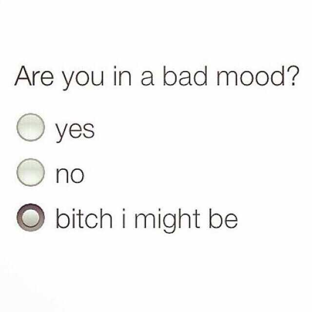 Meme - Text - Are you in a bad mood? yes no bitch i might be