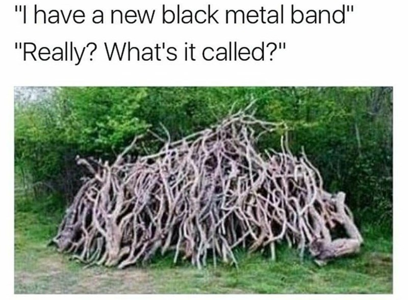 "Meme - Vegetation - ""I have a new black metal band"" ""Really? What's it called?"""