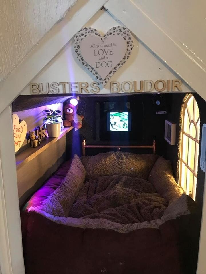 "dog house - Room - All you need is LOVE and a DOG BUSTERS"" BOUDOIR FooD FuN ACT"