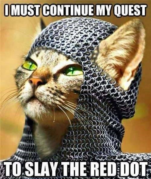 animal meme - Cat - OMUST CONTINUE MY QUEST TO SLAY THE RED DOT