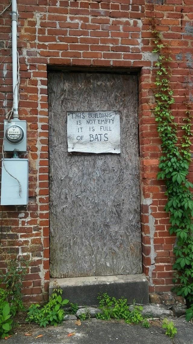 Brickwork - THIS BUILDING IS NOT EMPTY IT IS FULL BATS OF