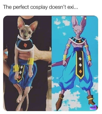 dragon ball z meme - Cartoon - The perfect cosplay doesn't exi... HEHES