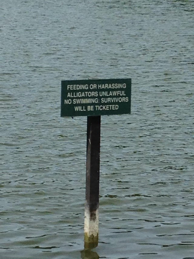 Water - FEEDING OR HARASSING ALLIGATORS UNLAWFUL NO SWIMMING: SURVIVORS WILL BE TICKETED