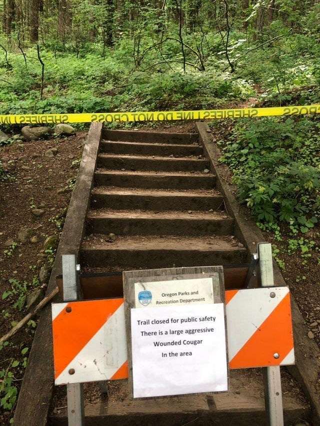 Nature reserve - CHEBIEEC V CHEBIEECTWIE DOVIO CBOS Oregon Parks and Recreation Department Trail closed for public safety There is a large aggressive Wounded Cougar In the area