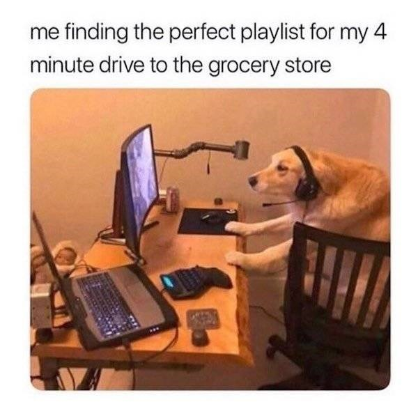 meme - Product - me finding the perfect playlist for my 4 minute drive to the grocery store