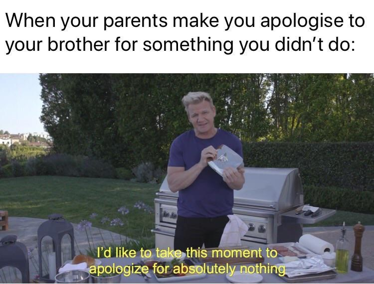 Meme - When your parents make you apologise to your brother for something you didn't do: I'd like to take this moment to apologize for absolutely nothing