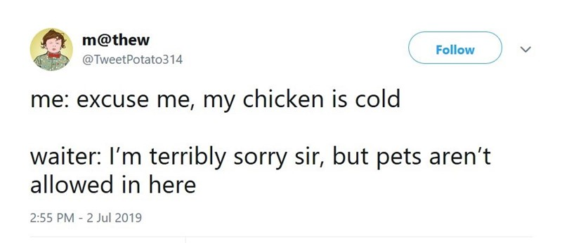 Meme - Text - m@thew Follow @TweetPotato314 me: excuse me, my chicken is cold waiter: I'm terribly sorry sir, but pets aren't allowed in here 2:55 PM - 2 Jul 2019