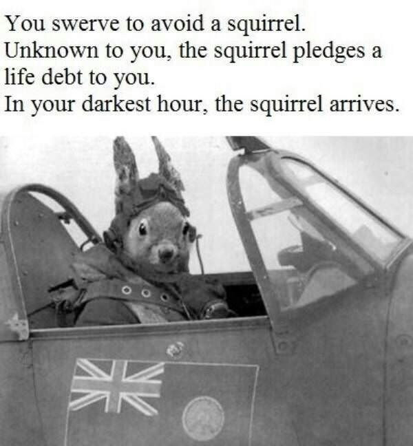 Meme - Motor vehicle - You swerve to avoid a squirrel. Unknown to you, the squirrel pledges a life debt to you. In your darkest hour, the squirrel arrives AK