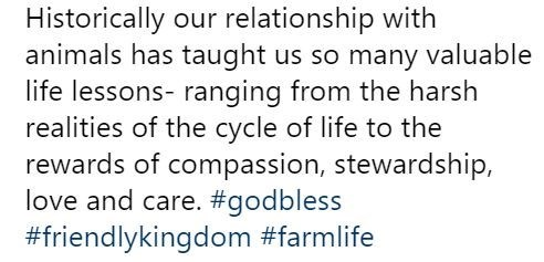 piglet - Text - Historically our relationship with animals has taught us so many valuable life lessons- ranging from the harsh realities of the cycle of life to the rewards of compassion, stewardship, love and care. #godbless #friendlykingdom #farmlife