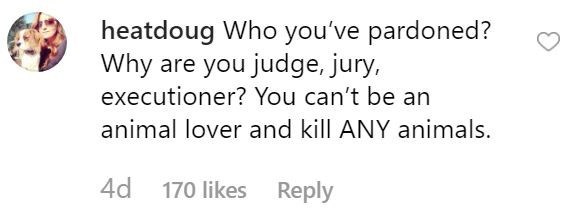 piglet - Text - heatdoug Who you've pardoned? Why are you judge, jury, executioner? You can't be an animal lover and kill ANY animals. 4d 170 likes Reply