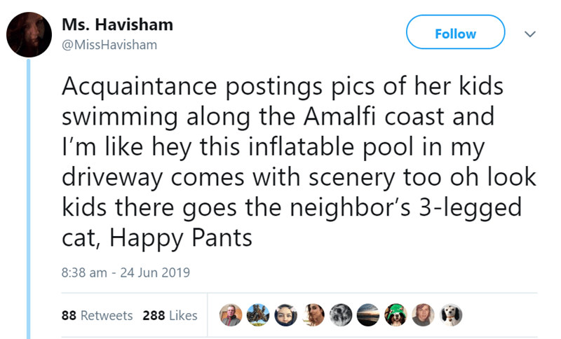 Text - Ms. Havisham Follow @MissHavisham Acquaintance postings pics of her kids swimming along the Amalfi coast and I'm like hey this inflatable pool in my driveway comes with scenery too oh look kids there goes the neighbor's 3-legged cat, Happy Pants 8:38 am - 24 Jun 2019 88 Retweets 288 Likes