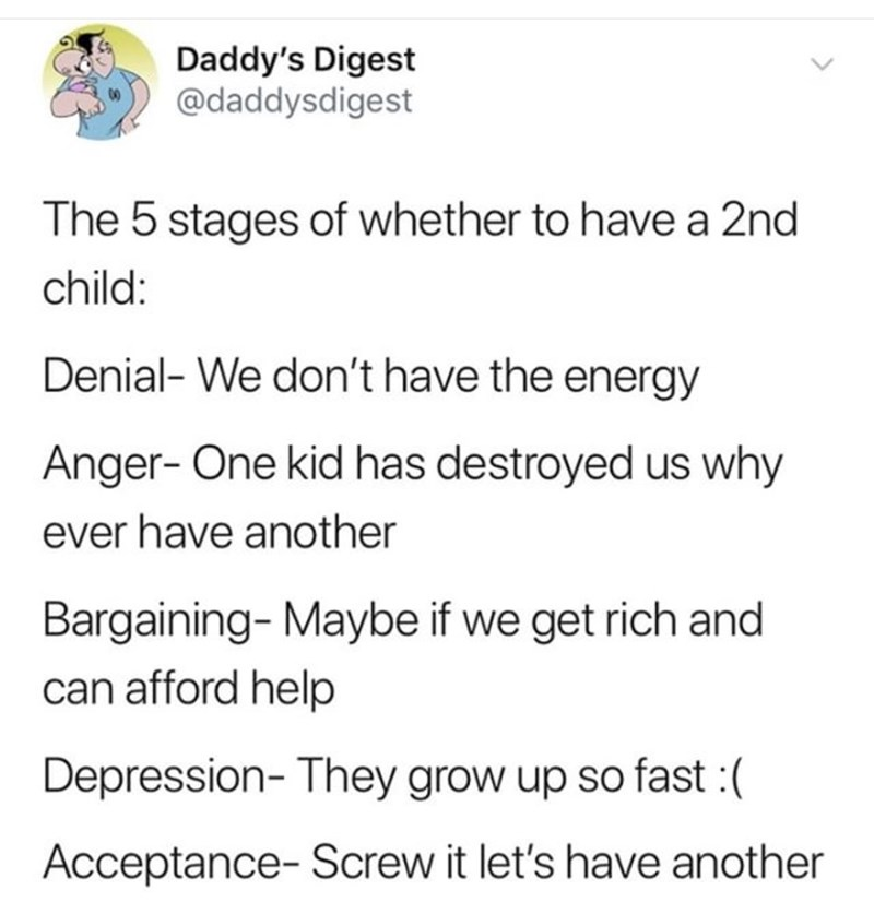 Text - Daddy's Digest @daddysdigest The 5 stages of whether to have a 2nd child: Denial- We don't have the energy Anger- One kid has destroyed us why ever have another Bargaining-Maybe if we get rich and can afford help Depression- They grow up so fast:( Acceptance- Screw it let's have another