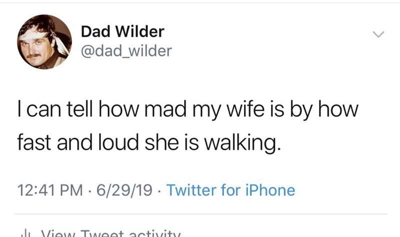 Text - Dad Wilder @dad_wilder I can tell how mad my wife is by how fast and loud she is walking. 12:41 PM 6/29/19 Twitter for iPhone J View Tweet 2ctivity