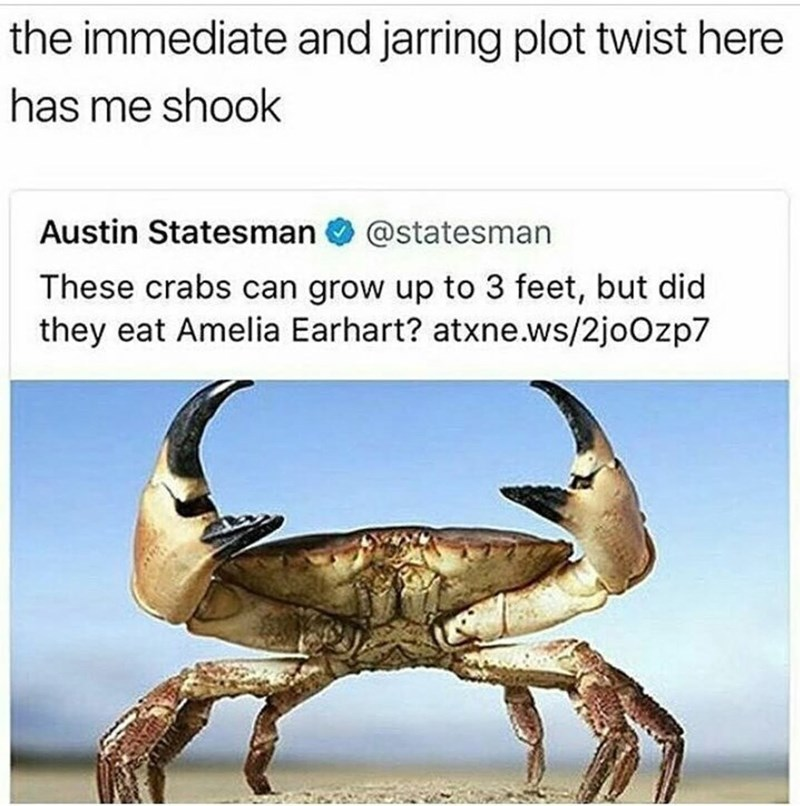 meme - Crab - the immediate and jarring plot twist here has me shook Austin Statesman @statesman These crabs can grow up to 3 feet, but did they eat Amelia Earhart? atxne.ws/2joOzp7