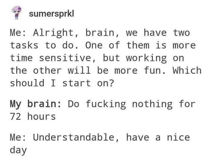 meme - Text - sumersprkl Me Alright, brain, we have two tasks to do. One of them is mor time sensitive, but working on the other will be more fun. Which should I start on? My brain: Do fucking nothing for 72 hours Me: Understandable, have a nice day