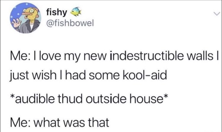 meme - Text - fishy @fishbowel Me: I love my new indestructible walls I just wish I had some kool-aid *audible thud outside house* Me: what was that