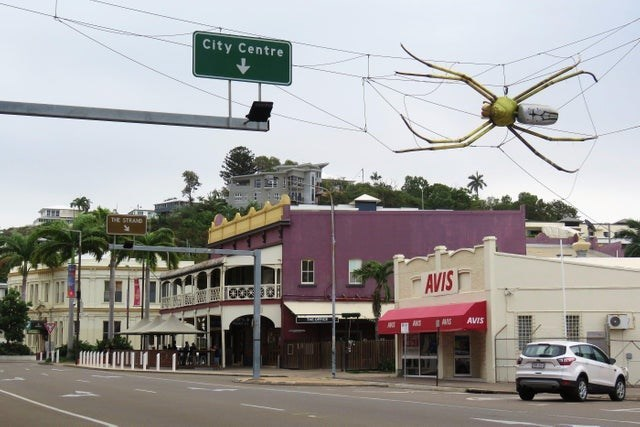 street with a spider that looks huge hanging in a web over the street