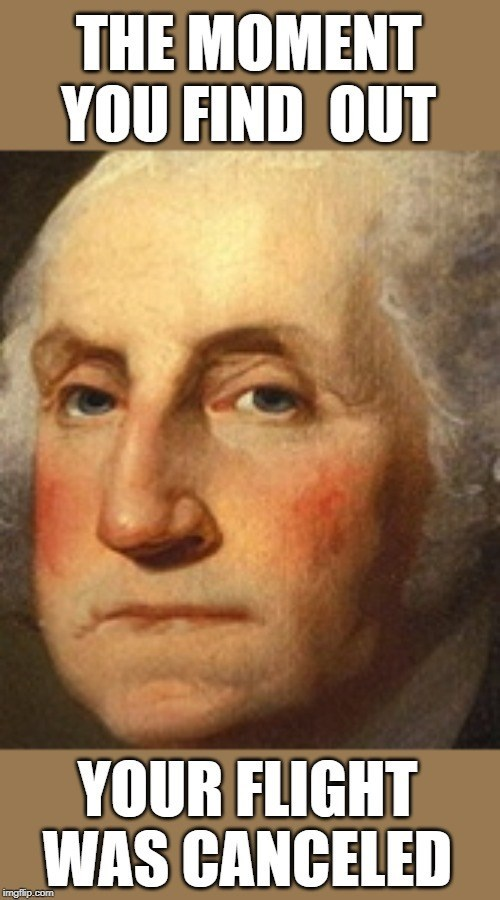 a close up of a painting of george washington looking annoyed