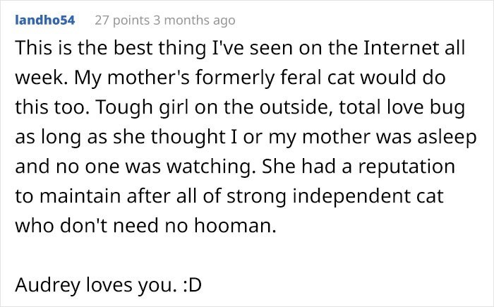 Text - 27 points 3 months ago landho54 This is the best thing I've seen on the Internet all week. My mother's formerly feral cat would do this too. Tough girl on the outside, total love bug as long as she thought I or my mother was asleep and no one was watching. She had a reputation to maintain after all of strong independent cat who don't need no hooman. Audrey loves you. :D