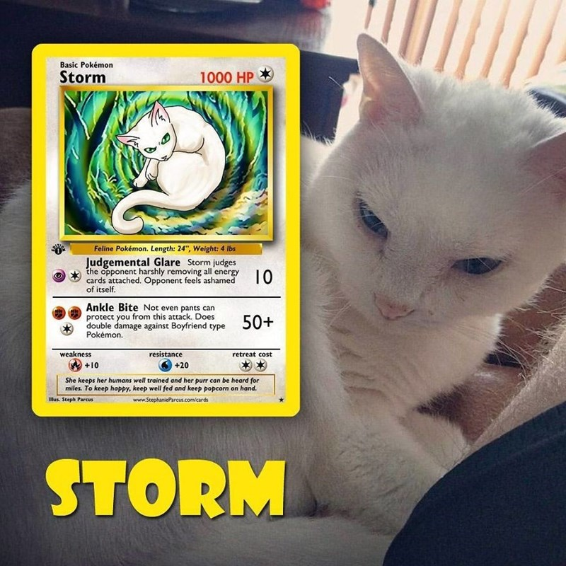 "pokemon card - Cat - Basic Pokémon Storm 1000 HP Feline Pokémon. Length: 24"", Weight: 4 lbs Judgemental Glare Storm judges the opponent harshly removing all energy cards attached. Opponent feels ashamed of itself. 10 Ankle Bite Not even pants can protect you from this attack. Does double damage against Boyfriend type Pokémon. 50+ resistance weakness retreat cost +10 +20 She keeps her humans well trained and her purr can be heard for miles. To keep happy, keep well fed and keep popcorn on hand lu"