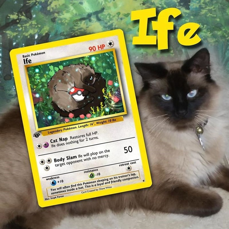 "pokemon card - Cat - Basic Pokémon Ife 90 HP Legendary Pokémon. Length: 16"", Weight: 10 lbs Cat Nap Restores full HP. Ife does nothing for 2 turns. Body Slam Ife will plop on the target opponent with no mercy 50 resistance weakness retreat cost -10 +10 You will often find this Pokémon sleeping on his trainer's lap, sometimes inside a hat. This is a loyal and friendly companion. Card Created by: Diane White lus. Steph Parcus"