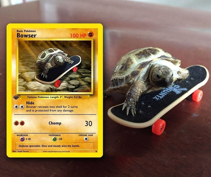 pokemon card - Tortoise - Basic Pokémon 100 HP Bowser UNT Tortoise Pokémon. Length: 3, Weight: 0.5 lbs Hide Bowser retreats into shell for 2 turns and is protected from any damage. 30 Chomp retreat cost resistance weakness -10 +10 Defense specialist. Slow and steady wins the battle. www.stephanieparcus.com/cards llus. Steph Parcus