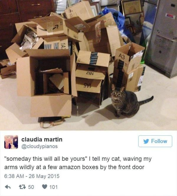 """cat tweet - Cardboard - A3 182 Follow claudia martin @cloudypianos """"someday this will all be yours"""" I tell my cat, waving my arms wildly at a few amazon boxes by the front door 6:38 AM - 26 May 2015 101 t50"""