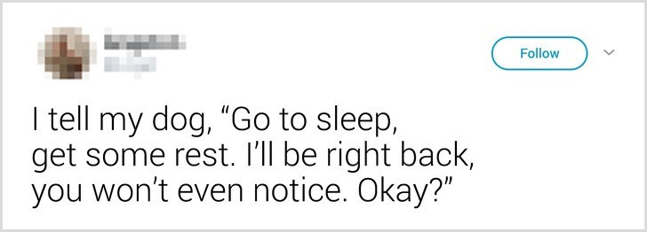 """Text - Follow I tell my dog, """"Go to sleep, get some rest. I'll be right back, you won't even notice. Okay?"""""""