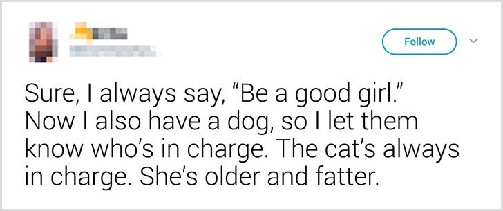 """Text - Follow Sure, I always say, """"Be a good girl."""" Now I also have a dog, so I let them know who's in charge. The cat's always in charge. She's older and fatter."""
