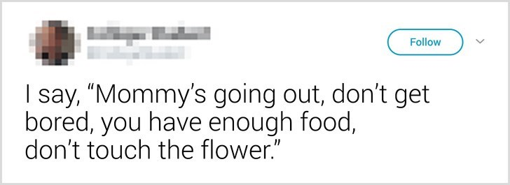 """Text - Follow I say, """"Mommy's going out, don't get bored, you have enough food, don't touch the flower."""""""