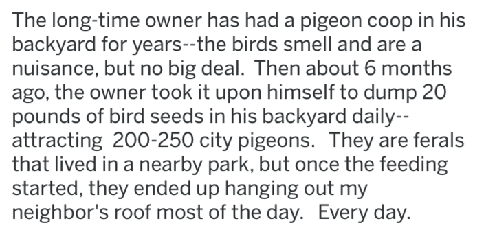 revenge - Text - The long-time owner has had a pigeon coop in his backyard for years--the birds smell and are nuisance, but no big deal. Then about 6 months ago, the owner took it upon himself to dump 20 pounds of bird seeds in his backyard daily attracting 200-250 city pigeons. They are ferals that lived in a nearby park, but once the feeding started, they ended up hanging out my neighbor's roof most of the day. Every day.